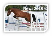 FLoki de Béchevel qualifié au National 2018 de l`élevage de taille présent au salon des étalons de SAINT LO 2018 Etalonnier Philippe Rainteau
